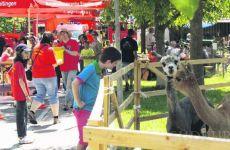 Rundflugaktion - Dorffest Eigeltingen
